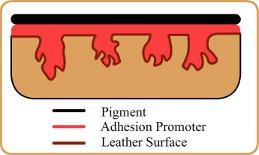 chất liên kết da Adhesion Promoter
